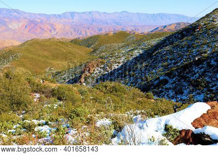 Chaparral Plants Covered With Snow On A High Desert Plateau Taken At A Windswept Mountain Ridge In A