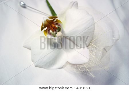 Orchard Buttonhole