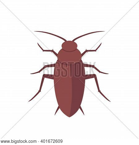 Cockroach, Roach Isolated On White, Vector Art