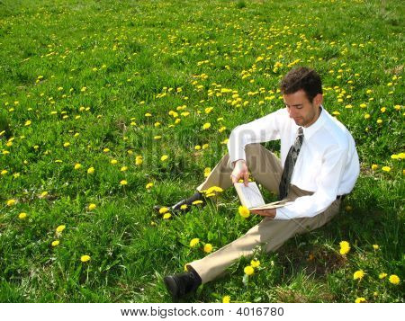 Reading On The Meadow