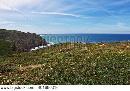 Cape Roca, Portugal - 09 May 2015: Flowers On Cape Roca On Atlantic Ocean, Portugal