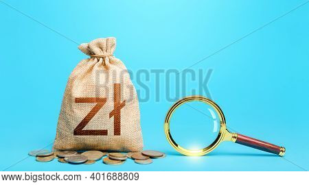 Polish Zloty Money Bag And Magnifying Glass. Origin Of Capital Funds. Revising The Budget To Save Mo