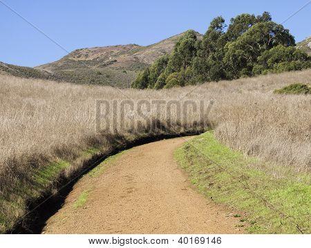 Dirt Road in Marin Headlands