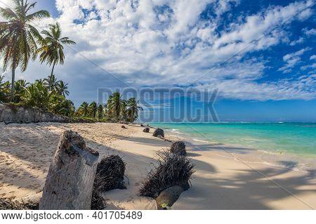 Beautiful Wild And Sand Beach In Punta Cana, Dominican Republic.
