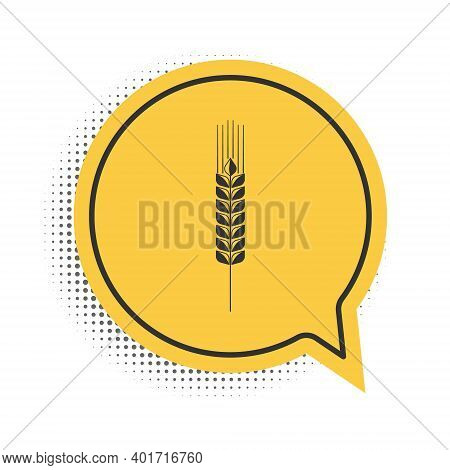 Black Cereals Icon Set With Rice, Wheat, Corn, Oats, Rye, Barley Icon Isolated On White Background.