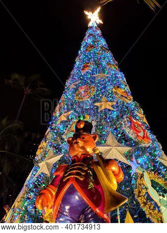 Honolulu, Hawaii - December 24, 2018: Light Up In Blue Light At Night 50-foot Norfolk Pine Christmas
