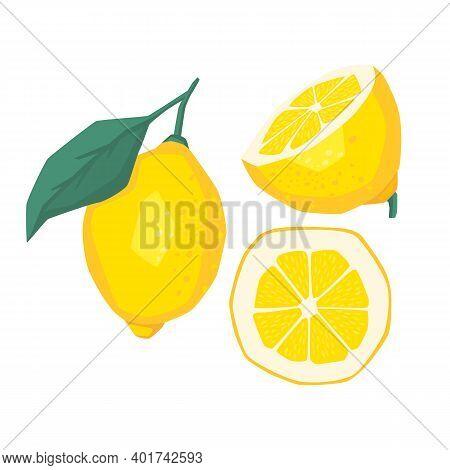 Lemon Slices. Fresh Citrus, Half Sliced Lemons And Chopped Lemon. Cut Lemons Fruit Slice And Zest Fo