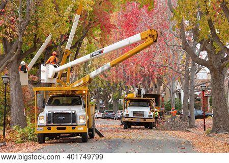 Alameda, Ca - Dec 11, 2020: City Trucks, Crews Thin The Liquid Amber Trees On A Residential Street.