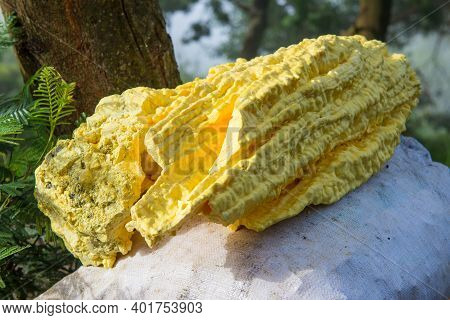 Pieces Of Raw Sulphur/sulfur After Mining From Kawah Ijen, A Volcano In East Java, Indonesia. Sulphu