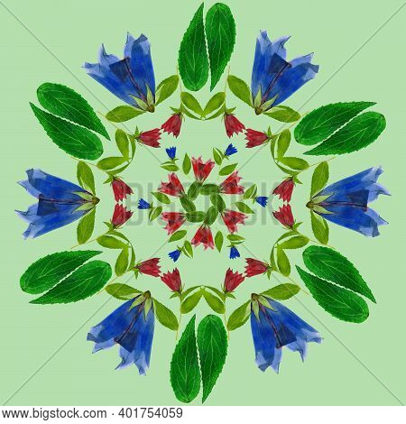 Mandala From Dried Pressed Flowers, Petals. Bluebell, Campanula. Mandala Is Symbol Of Buddhism, Hind
