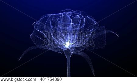 Closeup Of Beautiful Glowing And Illuminated Flower, 3d Render