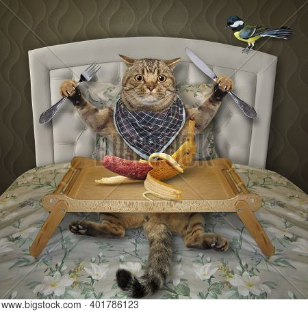 A Beige Cat Is Eating A Banana Sausage From A Wooden Square Tray In The Bed At Home.