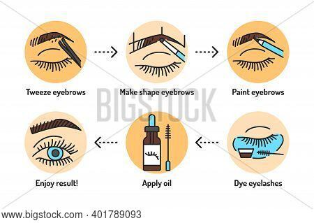 Eyebrows And Eyelashes Service Outline Concept. Apply Makeup. Beauty Industry Line Color Icons. Pict
