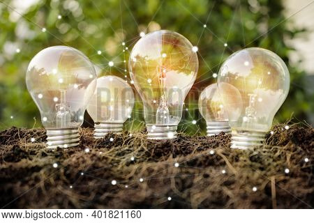 Renewable Energy Concept. Energy Saving Light Bulb And Tree Growing On Nature Background. Saving, Ac