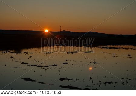 Paddy Fields Which The Sun Of The Dawn Is Reflected In Spain
