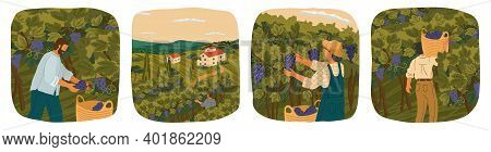 The Harvesting Of Wine Grapes. People Work On A Winery Field. Hand Draw Vector Illustration Poster.