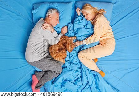Above Shot Of Serene Mature Husband And Wife Sleep Peacefully In Bed With Dog Have Lazy Morning Rela
