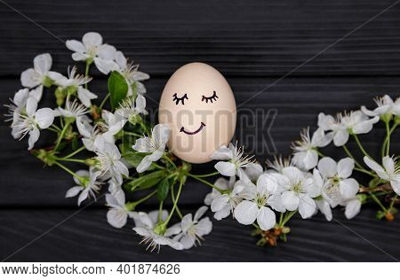 White Blooming Cherry Branches On Black Wooden Background. Decorative Pastel Painted Easter Eggs Wit