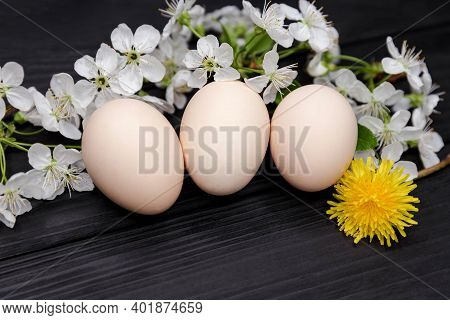 Bio Produce. Organic Hen Eggs. Composition Of Blooming Tree Branches. Natural Easter Eggs With White