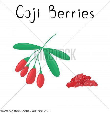 Goji Or Wolf Berries Illustration. Healthy Detox Natural Product. Organik Dietary Supplement Fruit.