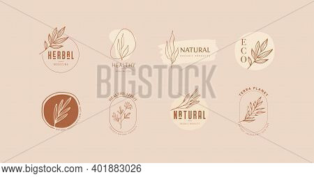 Collection Of Delicate Hand Drawn Logos And Icons Of Organic Food, Farm Fresh And Natural Products,