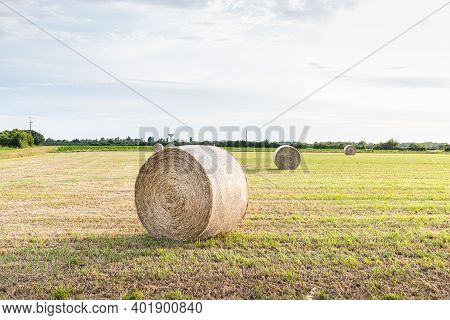 Hay Bale In A Meadow Next To A Ripe Sunflower Field In France