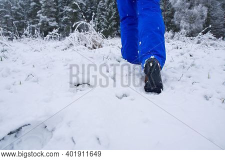 Man Hiking In Winter Forest By Snow In Hiking Shoes Boots. Winter Hiking.