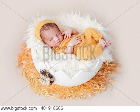 Cute newborn lying in egg cradle