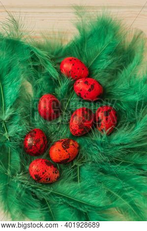 Spring Organic Easter Concept Dyed Easter Eggs, Quail Eggs, Feathers. Happy Easter