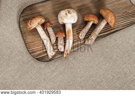Edible Mushrooms, Birch Bolete, Orange Cap Boletus, Shampignon Close Up On Natural Rustic Background