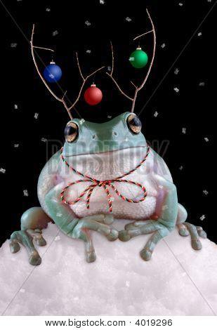 Froggy Reindeer