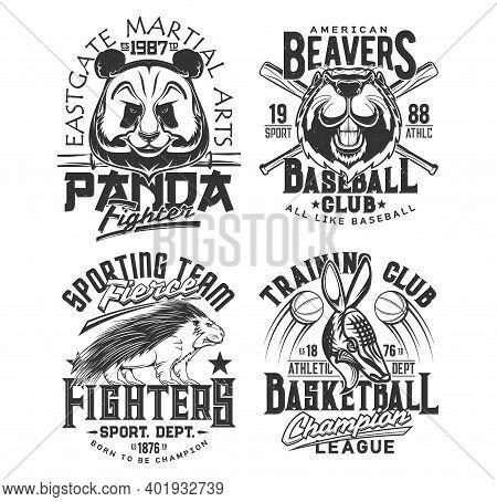 Baseball, Basketball Team T Shirt Print Sport Club Vector Emblems. Street Fighting Martial Arts And