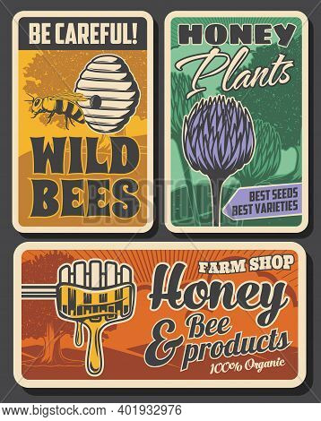 Beekeeping Farm And Honey Production Retro Posters. Bees Hive Or Nest, Clover Flowers And Tree, Wood