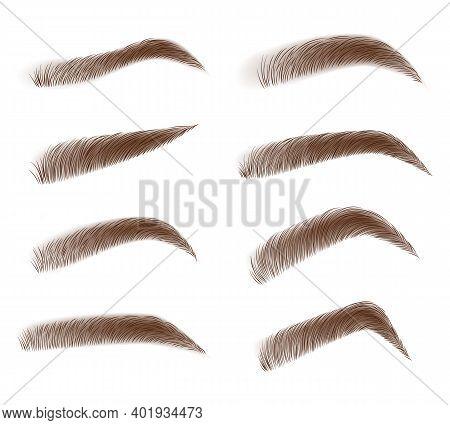 Eyebrow Shape Set. Fashion Eyebrows Of Various Shapes And Types. Brown Eyebrow Bag. Brown Eyebrows I