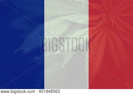Decriminalization In France. Leaf Of Cannabis Marijuana On The Flag Of France. Cannabis Legalization