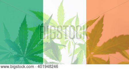 Weed Decriminalization In Ireland. Cannabis Legalization In The Ireland. Leaf Of Cannabis Marijuana