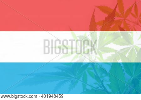 Medical Cannabis In The Luxembourg. Cannabis Legalization In The Luxembourg. Weed Decriminalization