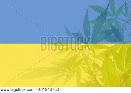 Medical Cannabis In The Ukraine. Leaf Of Cannabis Marijuana On The Flag Of Ukraine. Cannabis Legaliz
