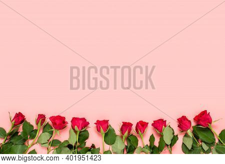 Pink Holiday Background With Red Roses In Bottom And Copy Space For Text And Wishes For Birthday, Wo
