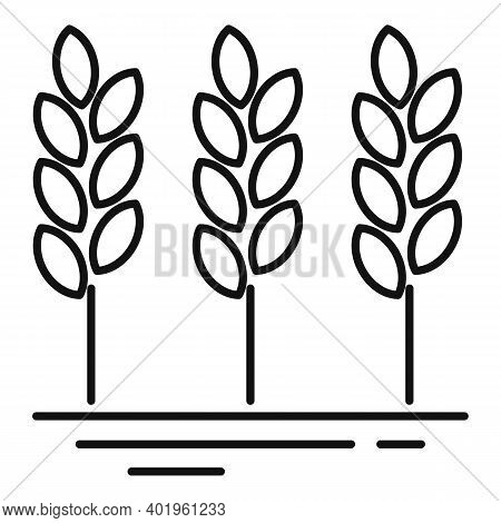 Farm Wheat Icon. Outline Farm Wheat Vector Icon For Web Design Isolated On White Background