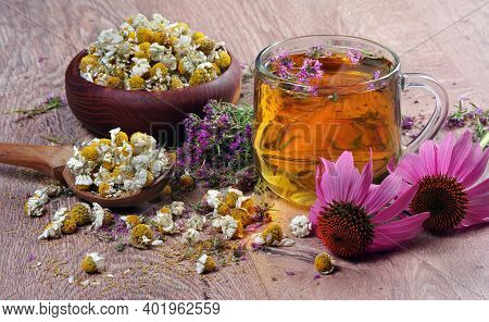 Summer Medical Herbs. Cup Of Thyme Tea, Dried Chamomile, Immortelle Flowers And Echinacea Flowers On