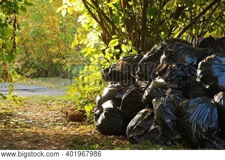 Concept Of Seasonal Cleaning In Public Areas In The City. Many Black Garbage Bags With Trash In Autu