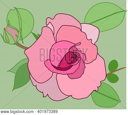 A Beautiful Dusty Pink Rose. Vector Rose. Isolated Image. Stained Glass Window. Mosaic