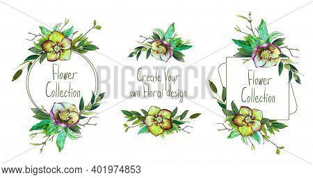 Floral Frames Set. Helleborus Flower. Wedding Invite, Bouquets