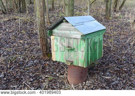 Apiary Located In Nature For Collect Honey From Honeycomb. Old Wooden Hive For Bees. Beekeeping Natu