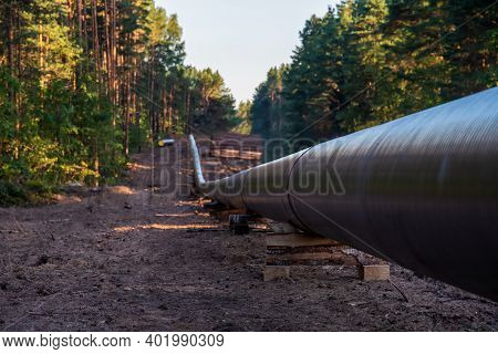 Natural Gas Pipeline Construction Work In Forest Area. Crude Oil Pipe And Petrochemical Pipe On Top