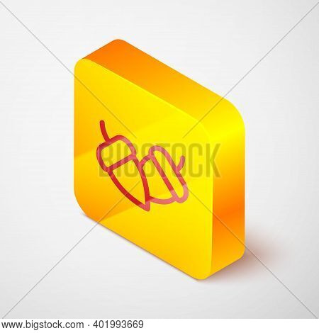 Isometric Line Acorn Icon Isolated On Grey Background. Yellow Square Button. Vector