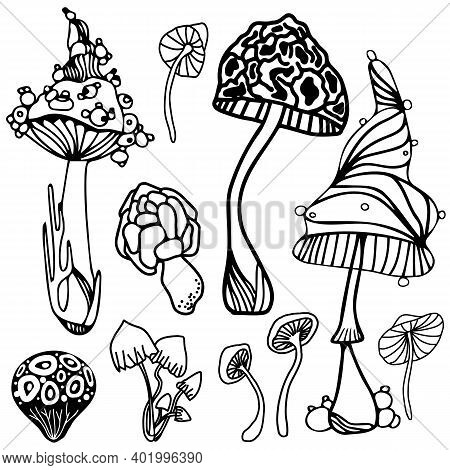 Set Of Stylized Magic Psychedelic Mushrooms. Coloring Page Hallucinogenic, Cosmic, Fantazy Mushrooms