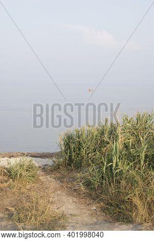 The Coast Of The Sea Of Azov. Ukraine