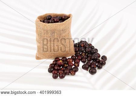 The Amazon Acai Fruit (euterpe Oleracea) In Neutral Background